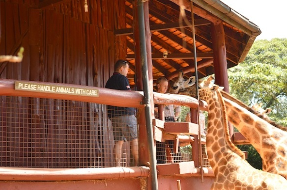 Visitors at the Giraffe Centre, Nairobi